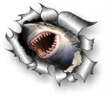 A4 Size Ripped Torn Metal Design With Angry Shark Motif External Vinyl Car Sticker 300x210mm